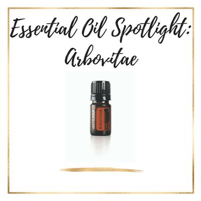 Essential Oil Spotlight: Arbovitae